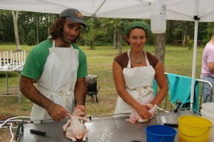 Open-air chicken slaughtering on Martha's Vineyard (courtesy Ali Berlow)