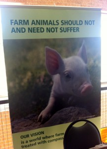 Banner by Compassion in World Farming USA